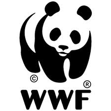 WWF combo